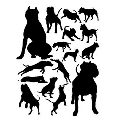 pitbull dog animal silhouettes vector image