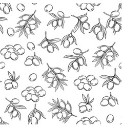 seamless pattern with olives vector image