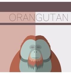 Orangutan flat postcard vector