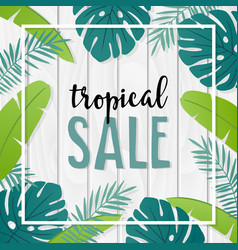 tropical sale template or banner with hand drawn vector image vector image