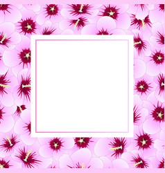 hibiscus syriacus - rose of sharon banner card vector image
