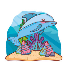 Nice dolphin with shells and seaweed plants vector