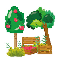 pixelated apple tree farm cultivation vector image