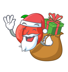 Santa with gift fruit of nectarine isolated on vector