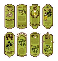 set fresh olive oil labels design element vector image