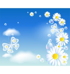 Transparent butterflies and daisy vector image vector image