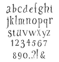 pencil hand drawn alphabet vector image