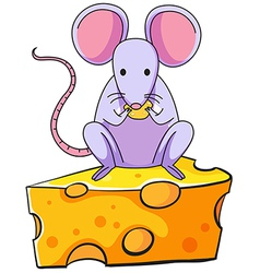 A rat eating above the big slice of cheese vector