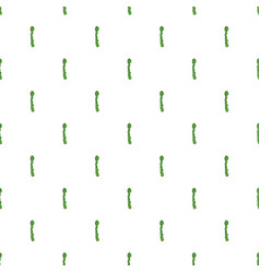 asparagus pattern seamless vector image