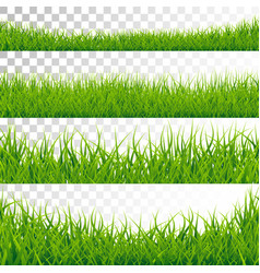 Green grass borders set on vector
