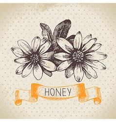 Hand drawn sketch honey background vector image