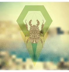 Hipster old fashion background with bug vector