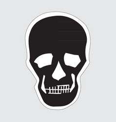 image of a human skull vector image