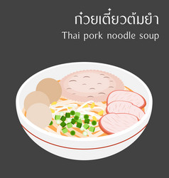thai pork noodle soup vector image