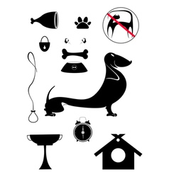 Dog breeding objects collection for design vector image