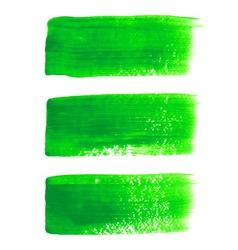 Green acrylic painted brush stroke set vector image