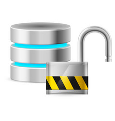 open padlock - and database computer security vector image vector image