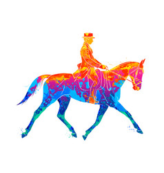 abstract equestrian sport from splash of vector image