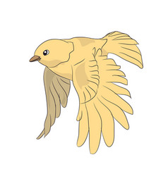 bird in flight color vector image