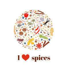 Cooking spices on bauble shape images vector