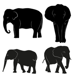 Decorative ornamental elephants silhouette vector image