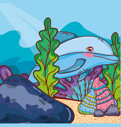 Dolphin animal with shells and seaweed plants vector