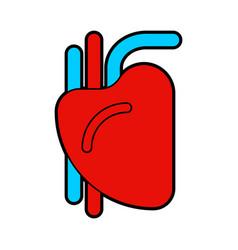 heart human sign organ man vector image