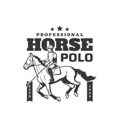 Horse polo sport jockey equine rides tournament vector