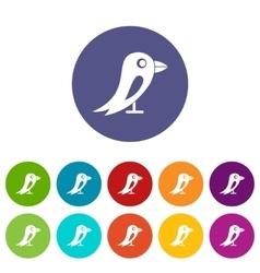 Social network bird set icons vector