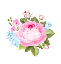 A spring decorative bouquet of roses flowers vector