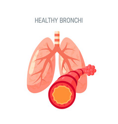 Healthy lungs icon in flat style vector