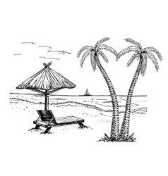 landscape with a beach sketch palms chaise vector image