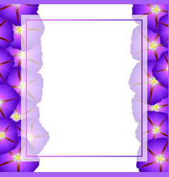 Purple morning glory flower banner card border vector