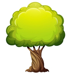 An old giant tree vector image vector image