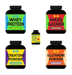 sports nutrition supplements creatine whey protein vector image vector image