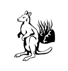 Wallaby vector
