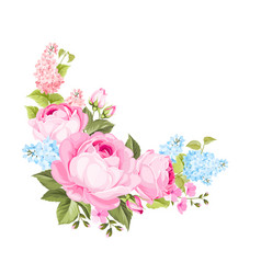 a spring decorative bouquet of roses flowers vector image