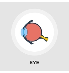 Anatomy eye flat icon vector