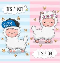 Baby shower greeting card with cute alpacas boy vector