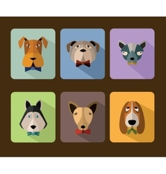 Big set of icons of dogs vector