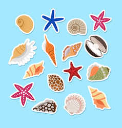 Sea shells cute stickers vector