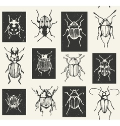 Seamless entomological pattern with bugs vector image