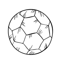 soccer ball sport vector image