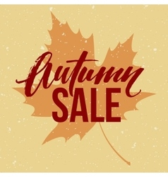 Autumn seasonal sale banner design Fall leaf vector image vector image
