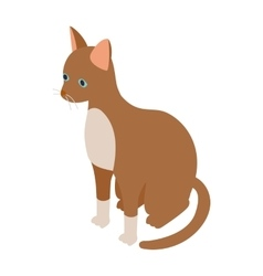 Cornish rex cat icon isometric 3d style vector image vector image