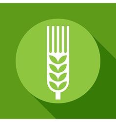 Wheat ear sign vector