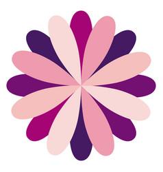 Circular flower formed by petals dark and light vector