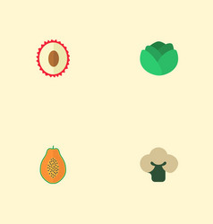 flat icons broccoli litchi pawpaw and other vector image