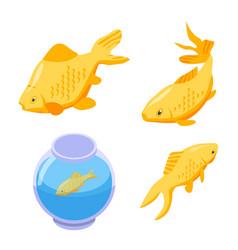 Goldfish icons set isometric style vector