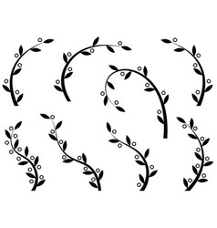 Set of olive branches on white background vector